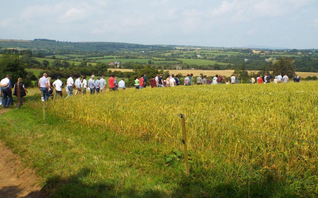 Successful Farm Walk
